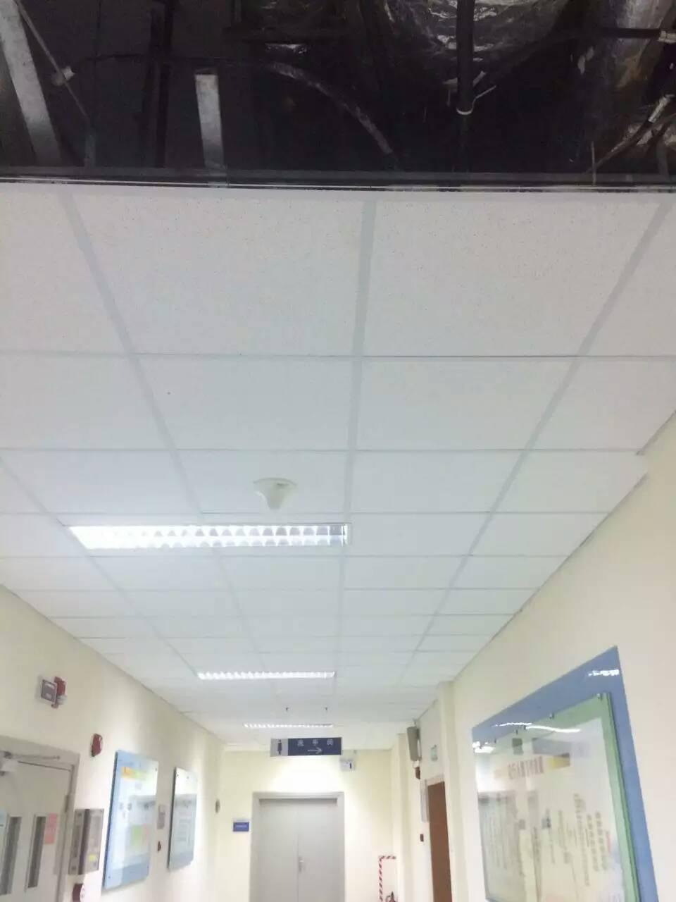 广州专业生产静电粉末铝扣板铝天花厂家
