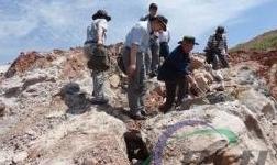 甘肃省加强矿产资源勘查开发管理