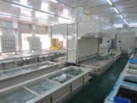 供应全自动铝阳极氧化生产线,阳极氧化生产设备