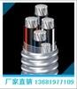 TC90  稀土铝合金电缆