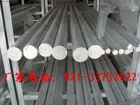 上海韵哲专业生产AM100A―F镁棒