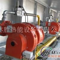 利雅路GAS系列二段火燃气燃烧器