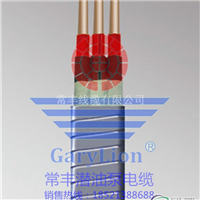 供应3KV6KV铝芯QYEQ潜油泵电缆