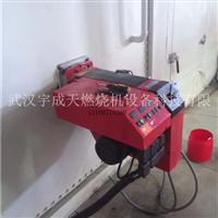 燃气燃烧器燃油燃烧机伺服电机
