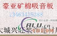 XWK8821毛蟲疊級礦棉吸音板