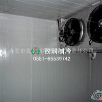 冷库工程安装公司建铝排双温冷库