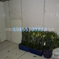 铝排冷库设计花卉冷库低价出售