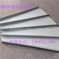 扇形鋁鎂錳屋面