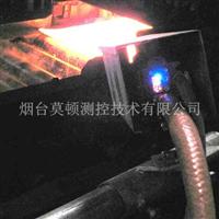 掃描式熱金屬檢測器MSEPF100