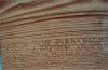 Aluminum Coil Maple Color coated
