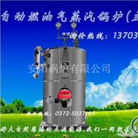 50公斤電蒸汽發生器