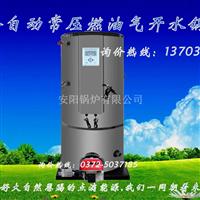 100公斤200公斤燃气开水锅炉