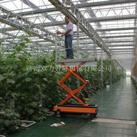 12米铝合金升降机 10米升降机