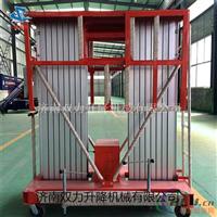 10米单双柱铝合金升降机