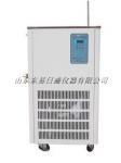 DLSB-525低溫冷卻液循環泵