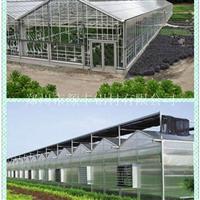 郑州生产加工阳光房型材