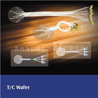 THERMOWAY   Wafer TC
